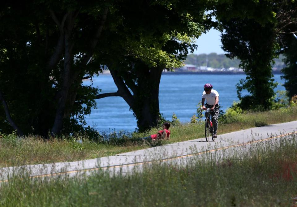 Near the Bourne Bridge, a cyclist passes a dog and his friend taking a break along the bike path.